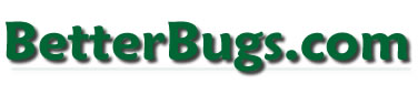 Betterbugs.com